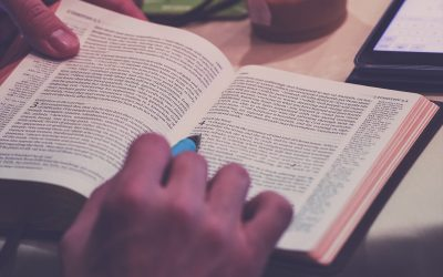 In Defense of Paraphrase Bibles
